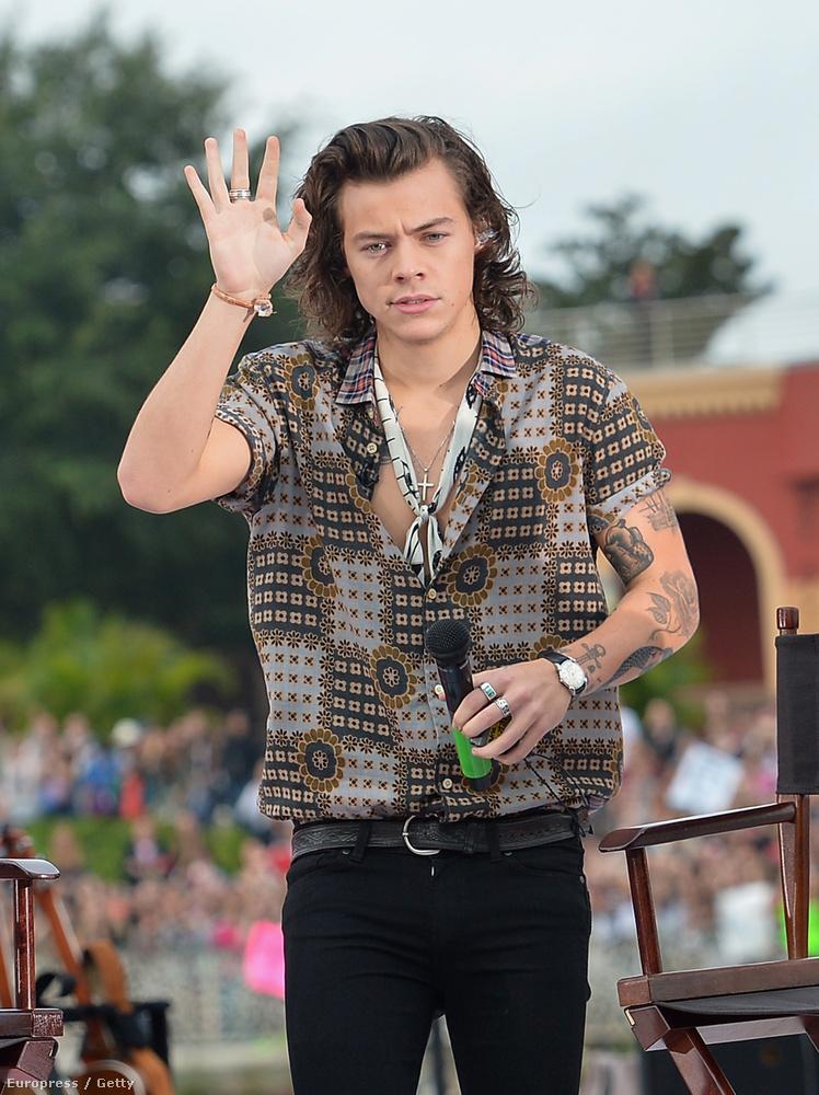 Harry Styles apróbb elváltozása a képen nem látható (itt bezzeg igen), de ha levenné az ingét, találnánk még egy mellbimbót