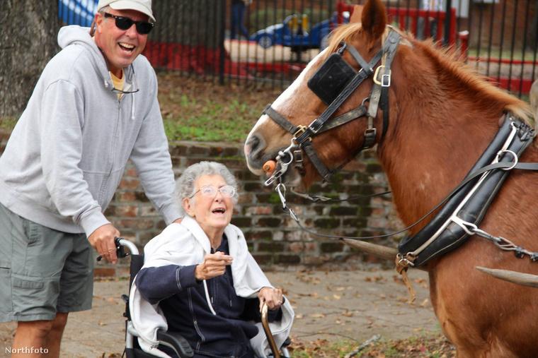 Ideje a lovakkal is megbarátkozni.