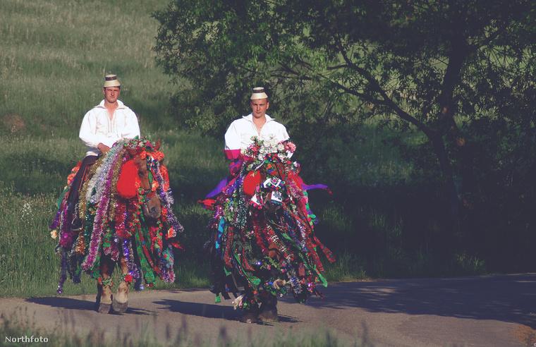 A lovakat is feldíszítették az esküvőre