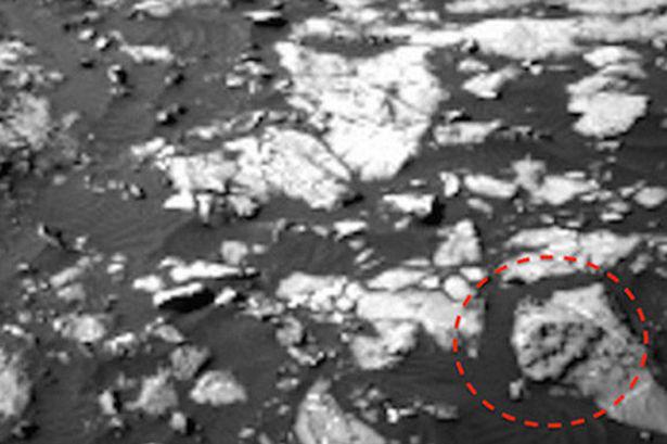 Mindeközben a Marson találtak egy T-rexet.Nem vicc.