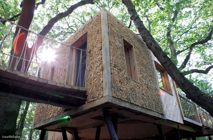 tk3s bm luxurious treehouse 02591428