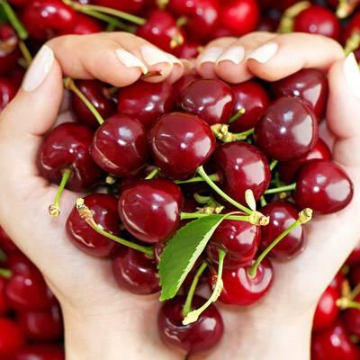 fogyni cseresznye