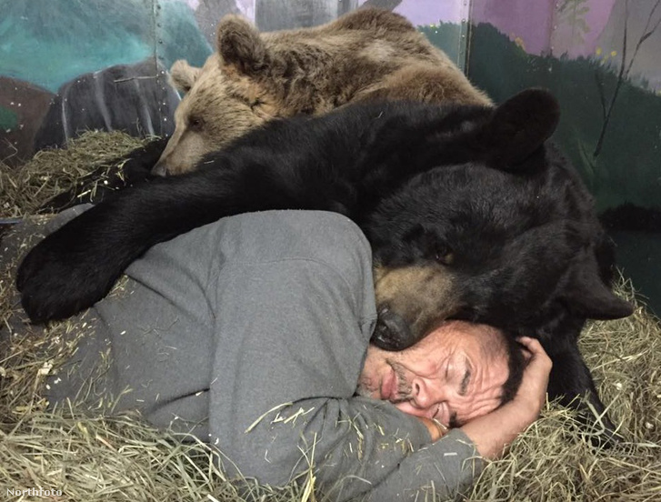 tk3s mdrum man bear friendship-10