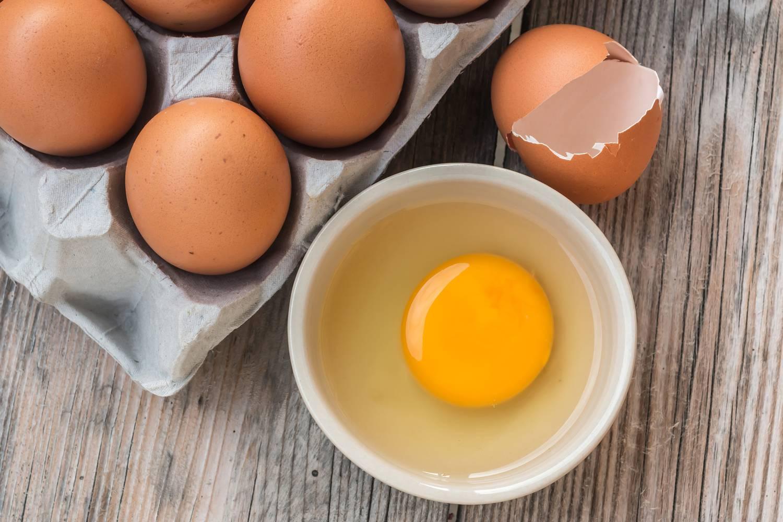 hány tojást toj a nőstény körféreg