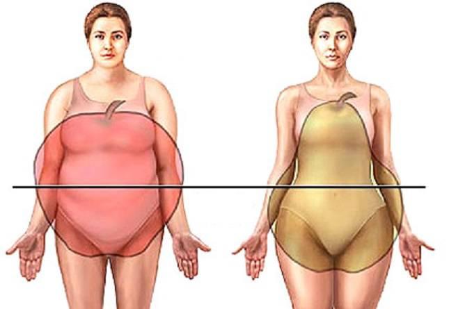 hogyan lehet kövér has