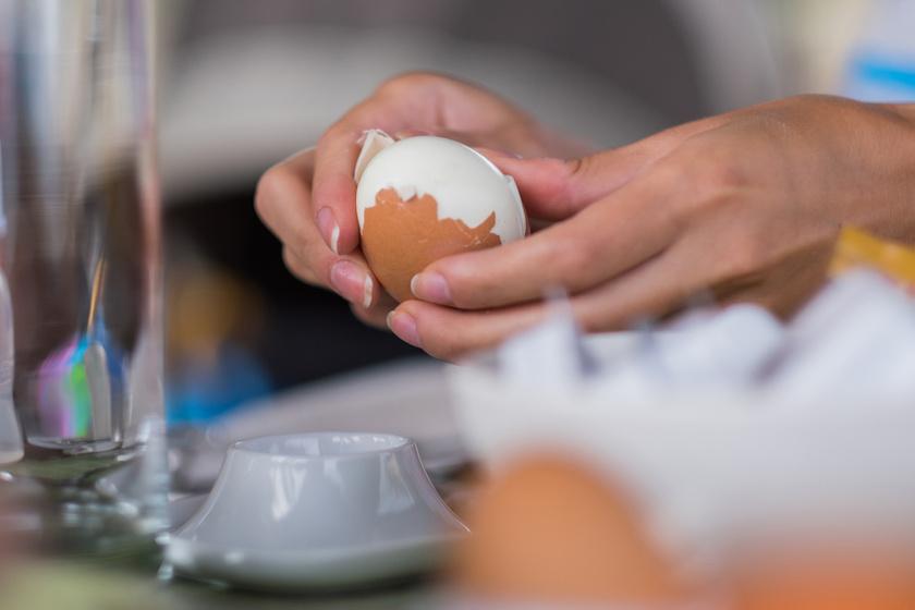 hogyan néznek ki a helmint tojások