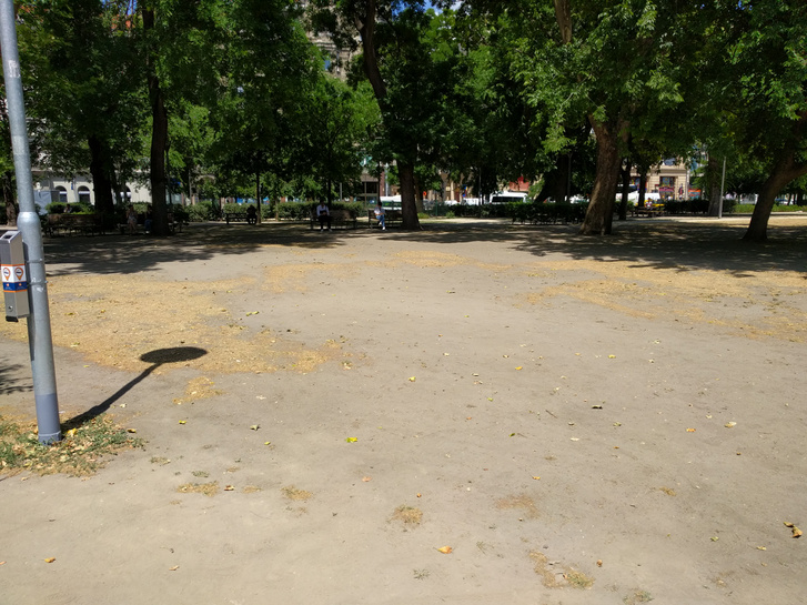 A budapesti Erzsébet tér gazdaságilag nem hasznosítható, épp ezért teljesen elhanyagolt részlete