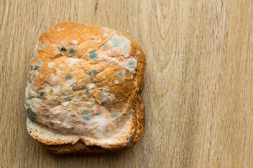 Penészes kenyeret ettem terhesen