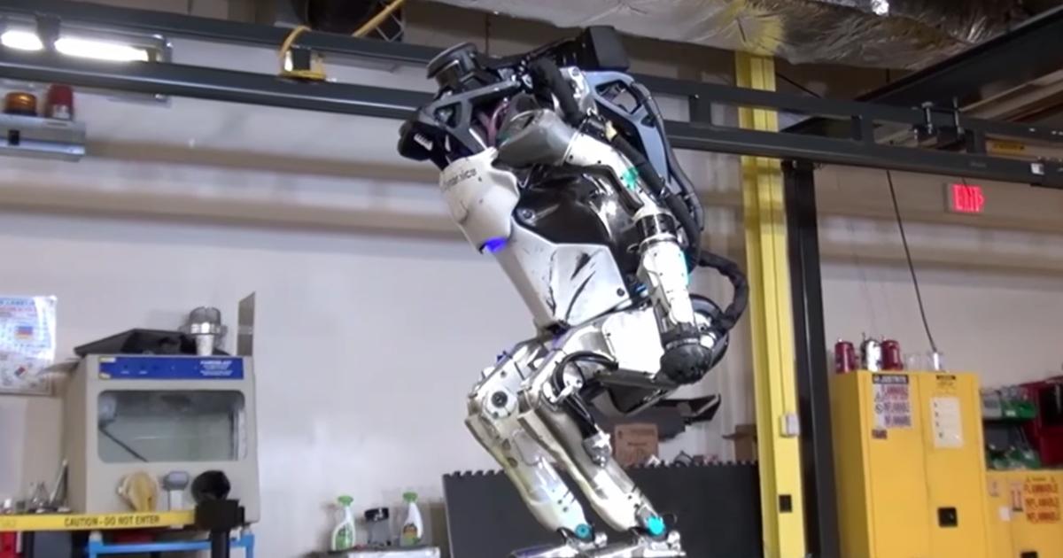 Valóban működik a Forex robot?