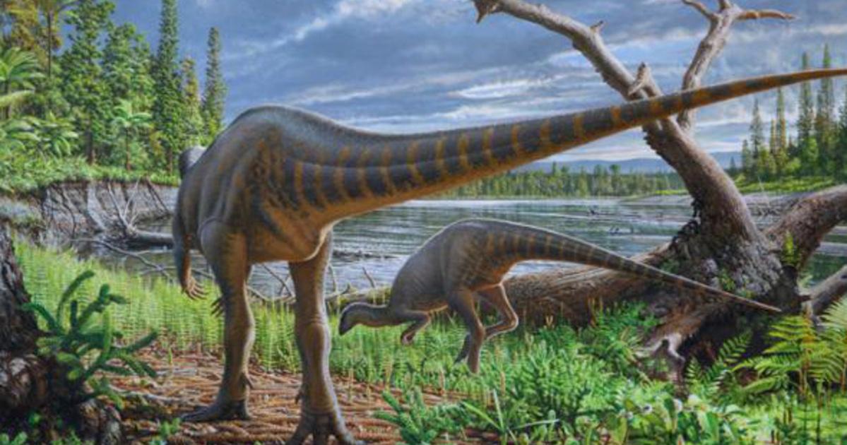 Folyóba fulladt dinoszauruszt azonosítottak Ausztráliában