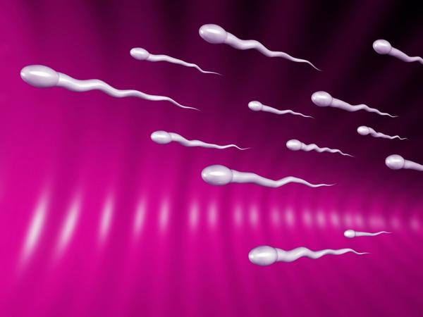 Aktív-sperma diéta: a termékenység erősen fokozható! - Ripost