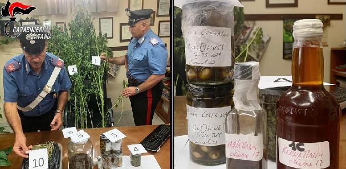 Azzal védekezik egy olasz sztárszakács, hogy csak új ízeken kísérletezett, miután 500 gramm indiai kendert találtak nála a rendőrök