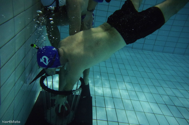 tk3s medavia underwater rugby 04
