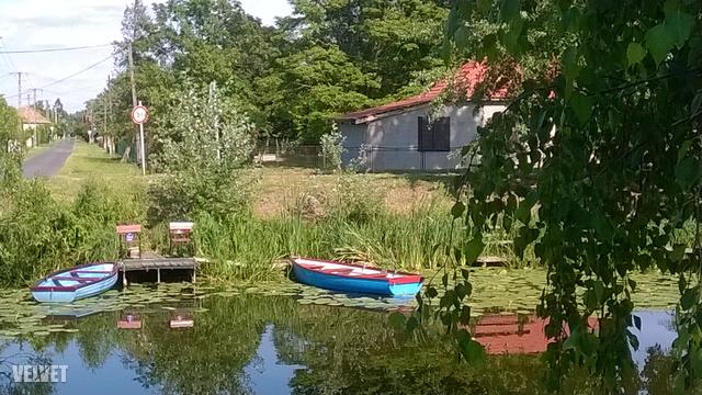 A kedvenc kék csónakpárunk.