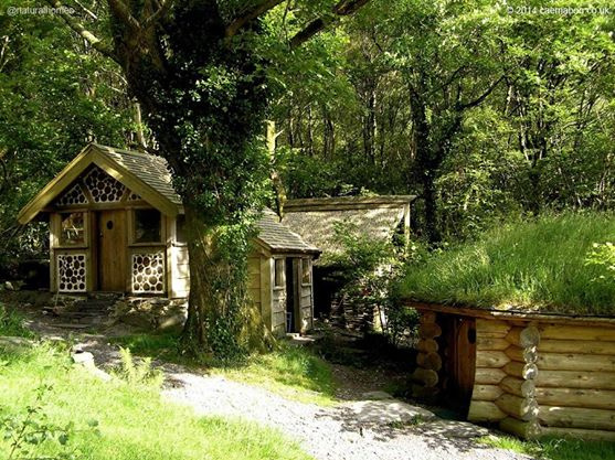 Egyre többen élnek ilyen házakban a városon kívül