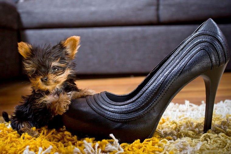 a fogyás megváltoztathatja-e a cipő méretét