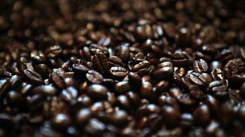Ebből könnyen kávéválság lehet