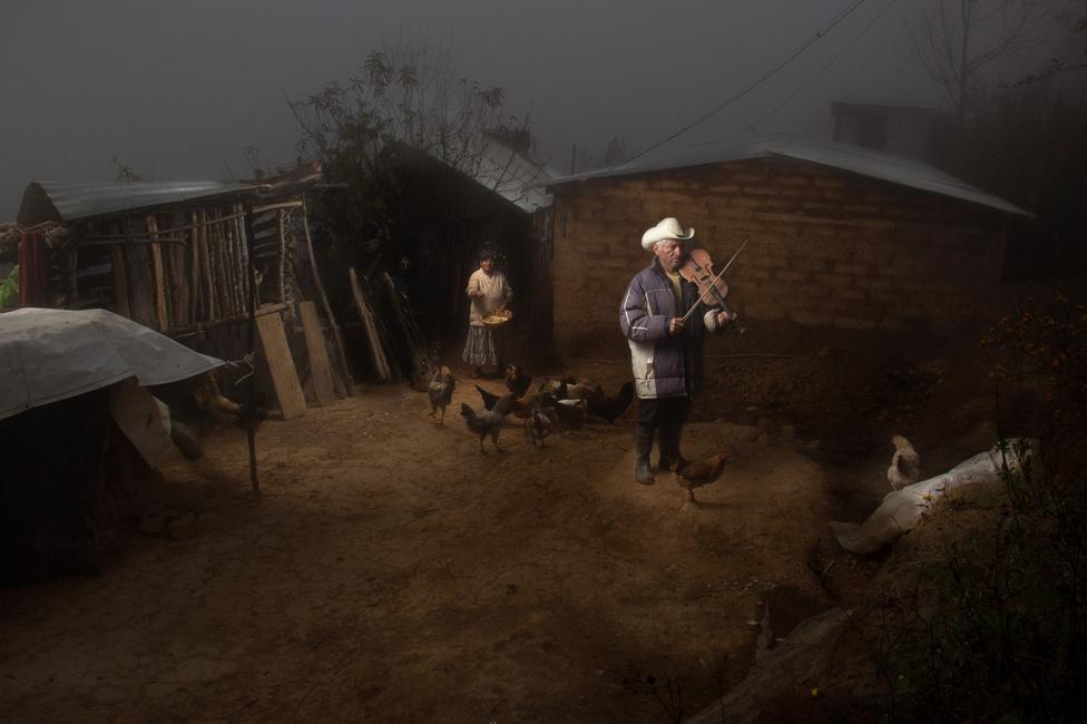 Az idős nagyapa, Honorato csirkéi közt hegedül az udvaron. Házát saját kezűleg építette, ahogy első hangszerét is magának készítette. A felesége nem is tudott a fotózásról, csupán véletlenül lett a kompozíció része azzal, hogy kijött megetetni az állatokat.