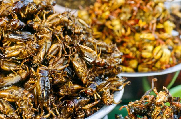 Képünk egy vietnami piacon készült