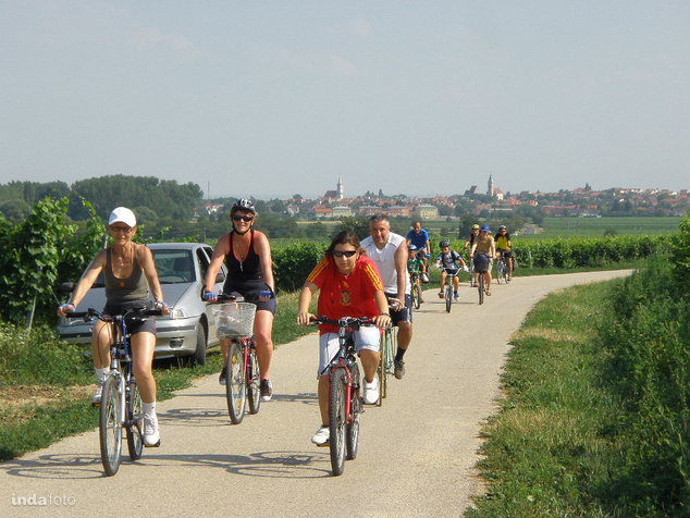 Biztonságos bringaút a szőlőben
