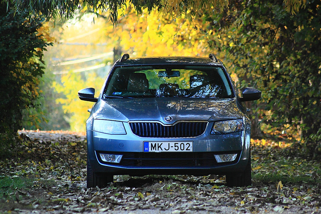 Az aktuális Skoda Octavia az állami beszerzéseken és cégautóként is népszerű. Az első kilenc hónapban háromezer darabot adtak el belőle