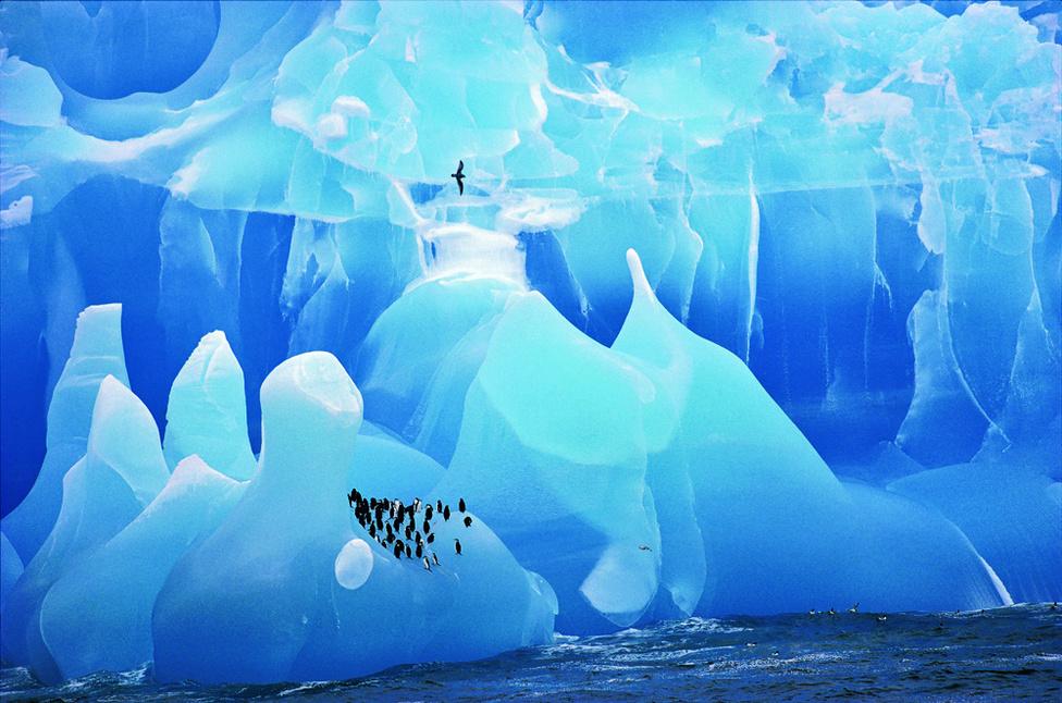 Kék jég és pingvinek. Igazi fotó, nem a Super Mario Galaxy egyik jeges pályája. Pedig tényleg úgy néz ki, mint valami renderfotó.