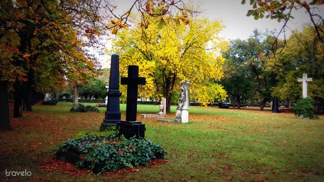Őszi színek a temetőben