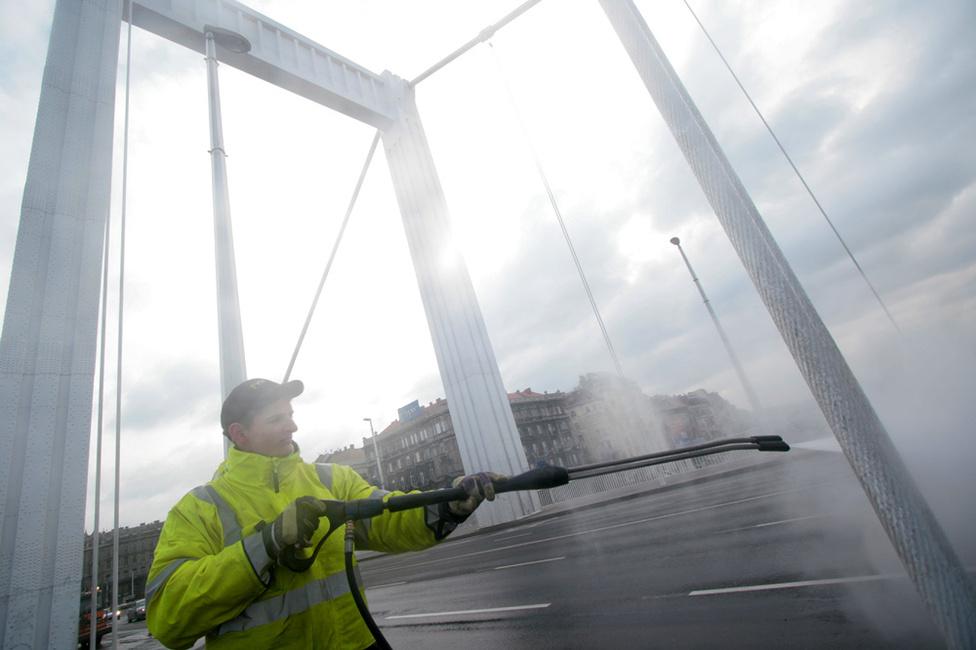 Mossák az Erzsébet hidat, 2009. március 8.