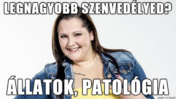 vikcsu.png