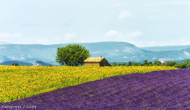 Provence, Franciaország