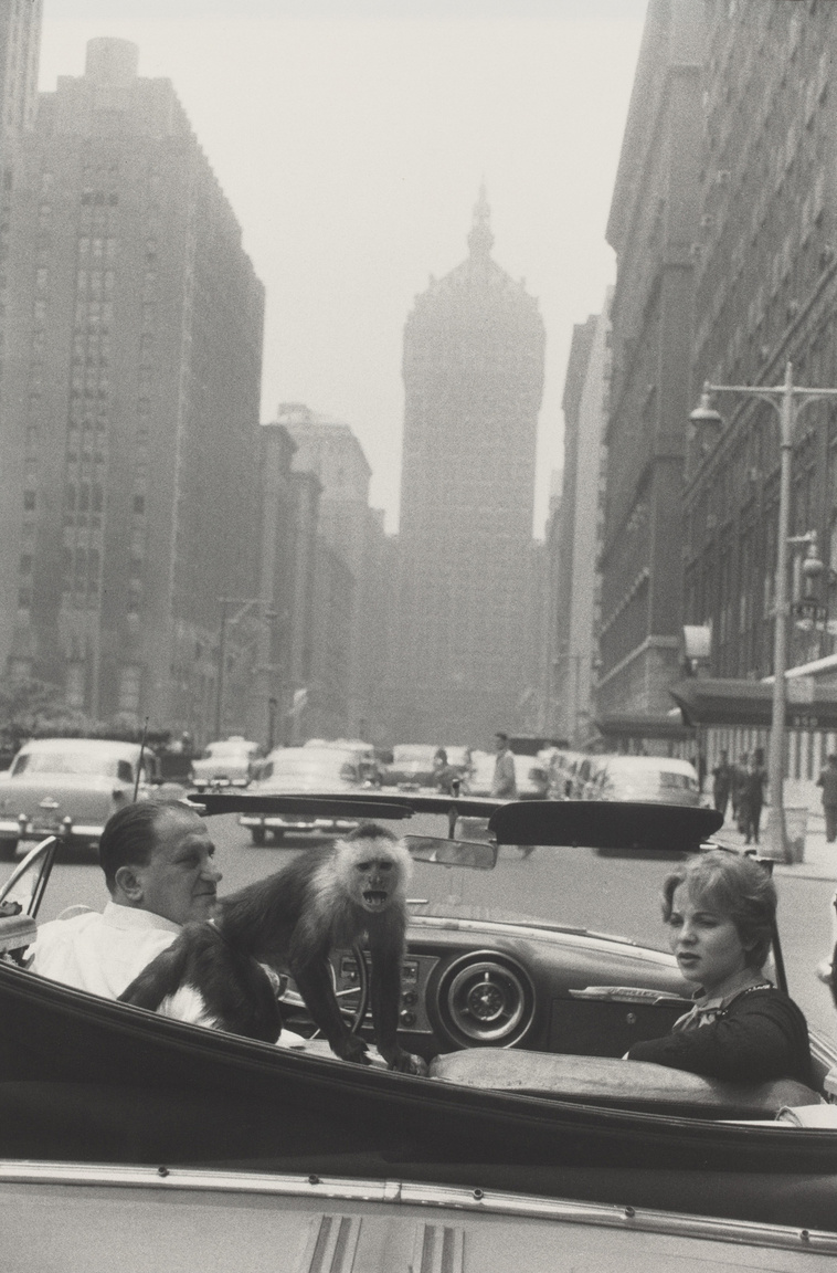 Park Avenue, New York (1959)