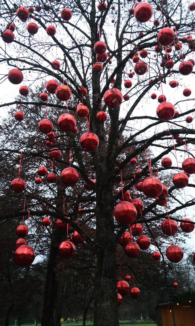 A fákat kidöntötte egy hatalmas vihar, így kényszerűségből egy lombhullatót dekoráltak fel.