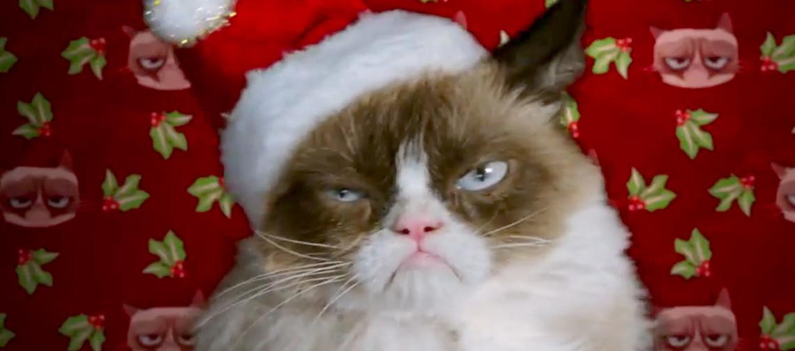 1415046241 grumpy-cat-zoom