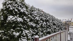 Újlipótban a kocsikon maradt meg a hó, a Normafánál már síelnek