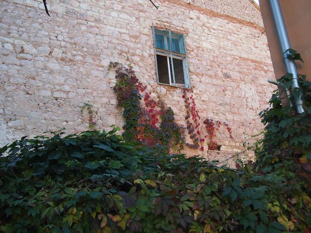Őszi részlet Tokaj belvárosából