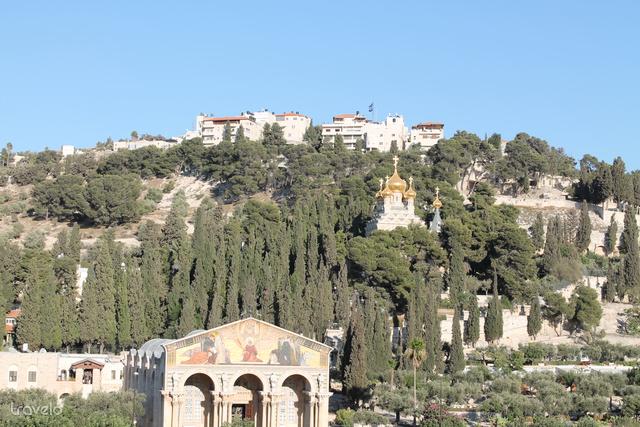 Az Olajfák hegye Jeruzsálemben