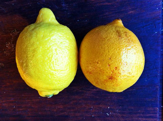 Balra egy citrom, jobbra egy Meyer citrom