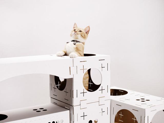 Csinos kis összeget, 23.873 eurót (körülbelül 7.3 millió forint) dobtak össze a cica rajongók a Poopy Cat névre keresztelt márka alkotóinak, akik egy macska játszóházzal házaltak a Kickstarter.com oldalán a közelmúltban.