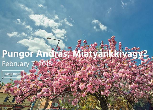 Kattintson a képre és olvasson kortárs magyar írókat!