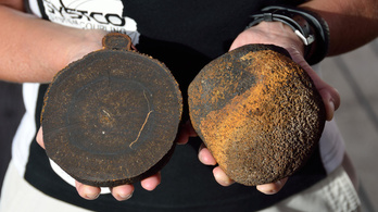 Szörnyhalak helyett furcsa golyókat találtak