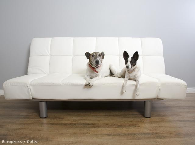 A kanapé nem ágy.
