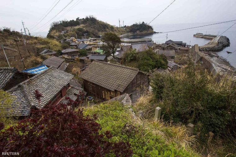 A Japán déli részén található aprócska sziget, Aoshima lakói eredetileg azért telepítettek be macskákat, hogy azok elpusztítsák a halászbárkákat ellepő egereket .