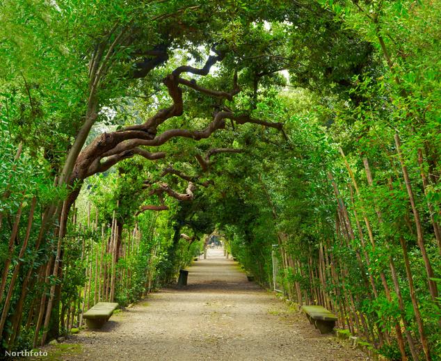 Boboli kertek, Firenze, Olaszország