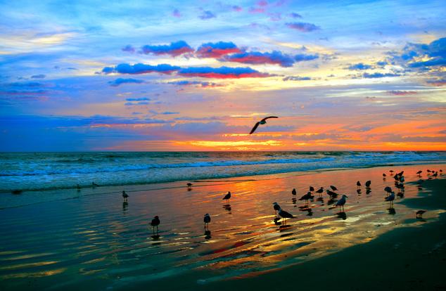 New Smyrna Beach, Amerikai Egyesült Államok
