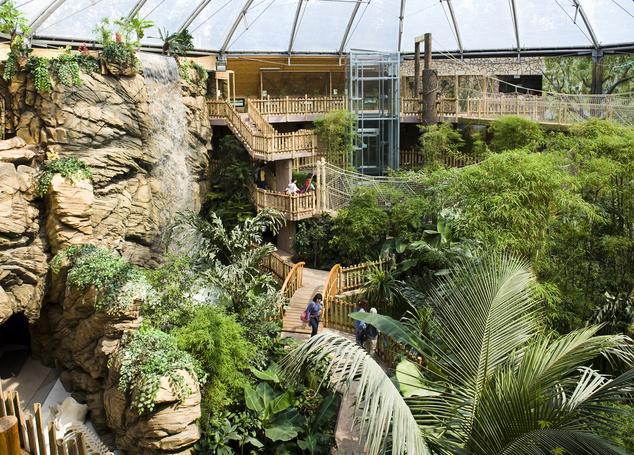 Nyíregyházi Állatpark - Zöld piramis