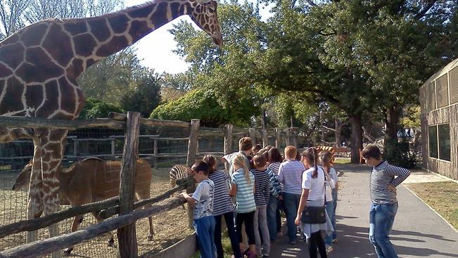 A győri állatkert