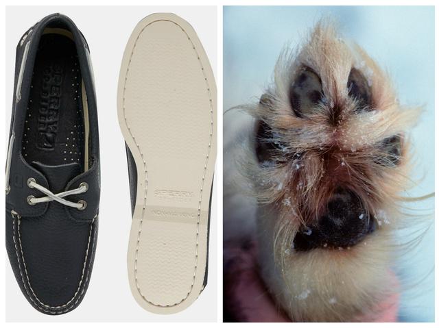 Balra az igazi Sperry cipő (most az ASOS-on 85 font), jobbra pedig egy kutyatappancs. Utóbbi képünk illusztráció, nem ez ihlette a tengerészcipőt!