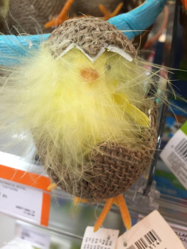 Így néz ki egy csibe, ami egy megbarnult tojásból éppen most kászálódik ki. A Müllerben lehet megvenni 475 forintért.