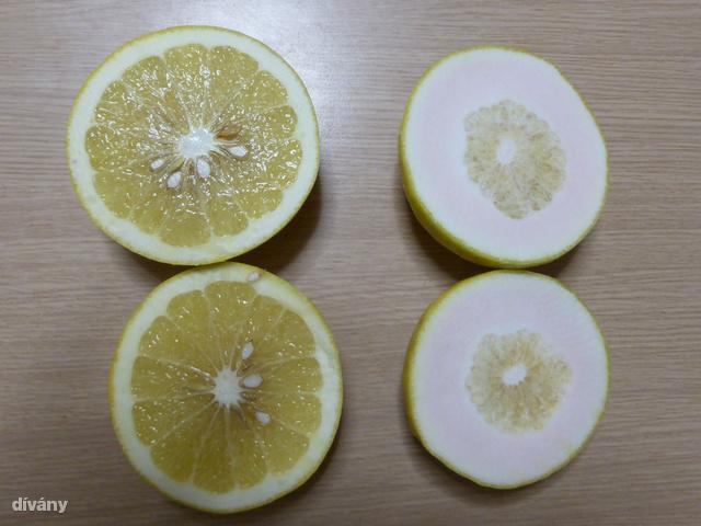 Félbevágtunk két grapefruitot és ezt kaptuk