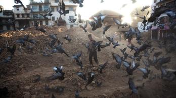 Nyolc nap után újabb túlélőkre bukkantak a romok alatt Nepálban